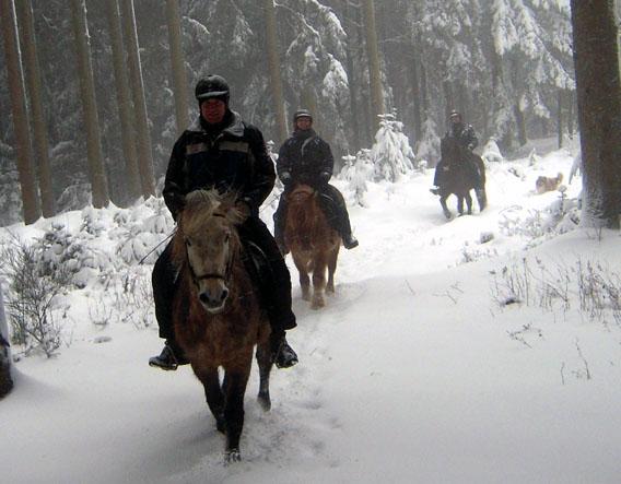 Schneeausritt 2015