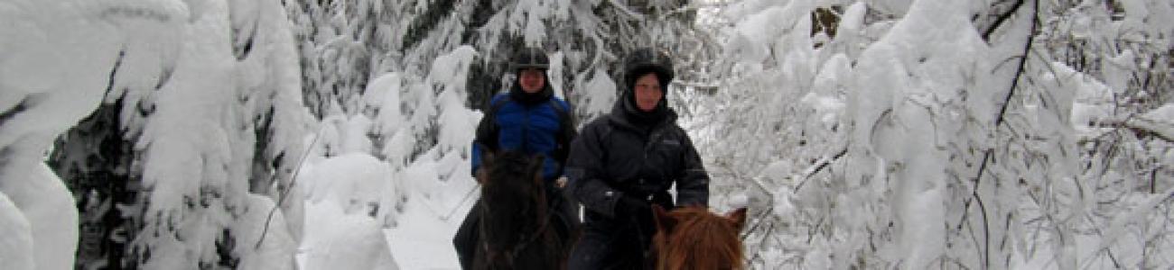 Schneeausritt durch den verschneiten Schwarzwald